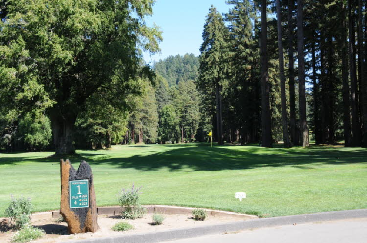Golf in the Redwoods
